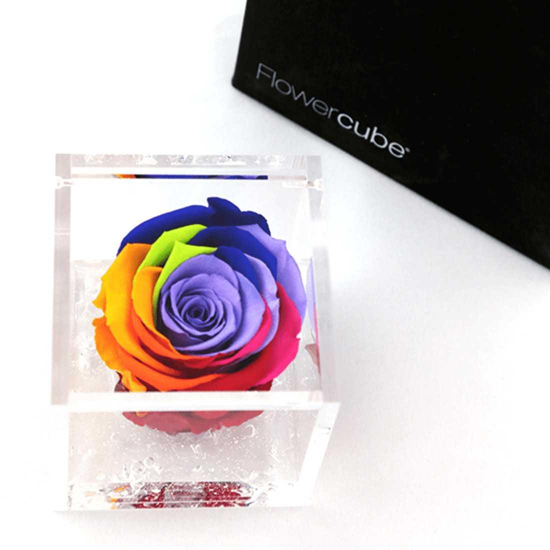 FlowerCube Rainbow 6x6 cm