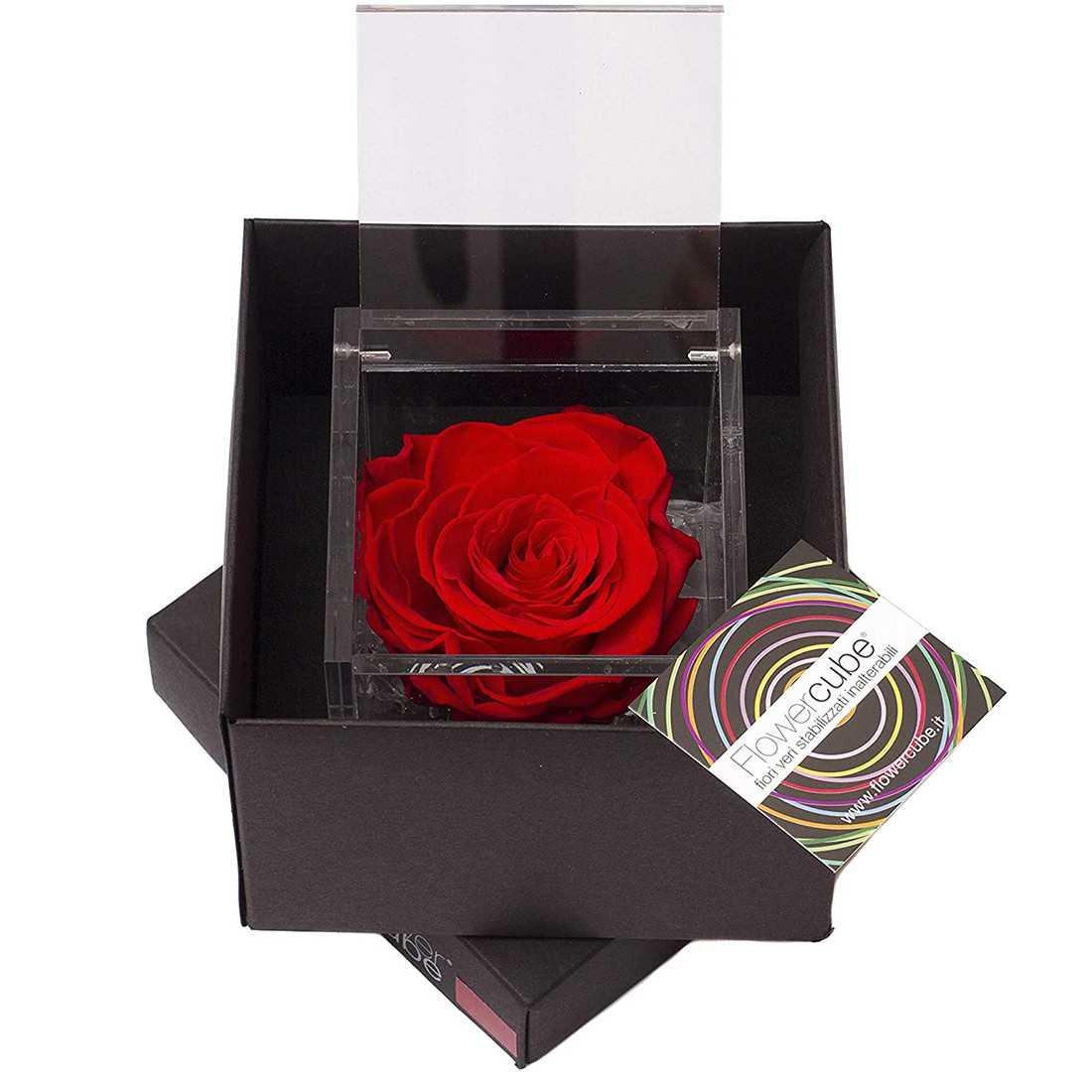 FlowerCube 6x6 cm