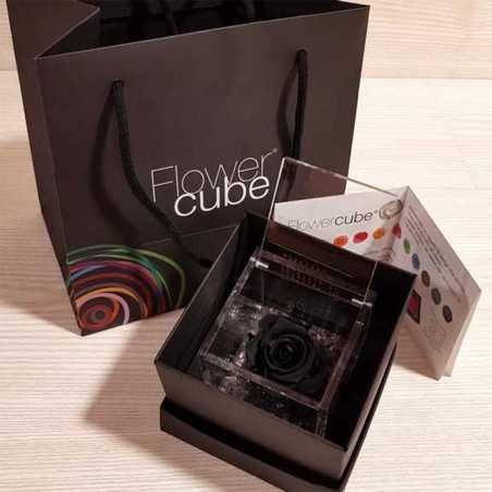 FlowerCube Nero10x10 cm shop online