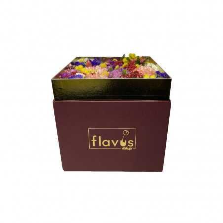 Box Mimosa shop online