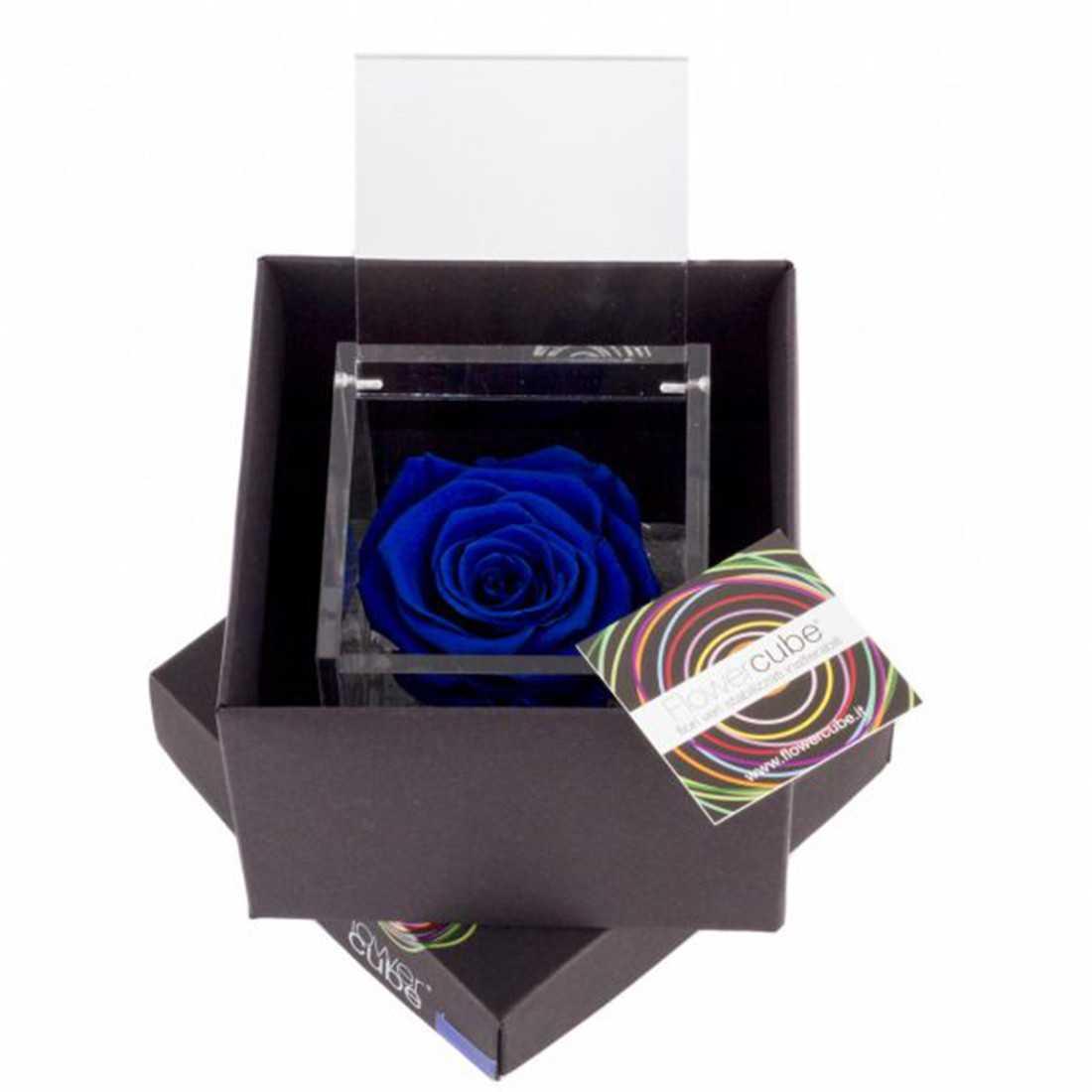 FlowerCube 10x10 cm